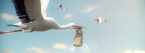 Rolli_Stork_002